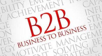 b2b有哪些模式