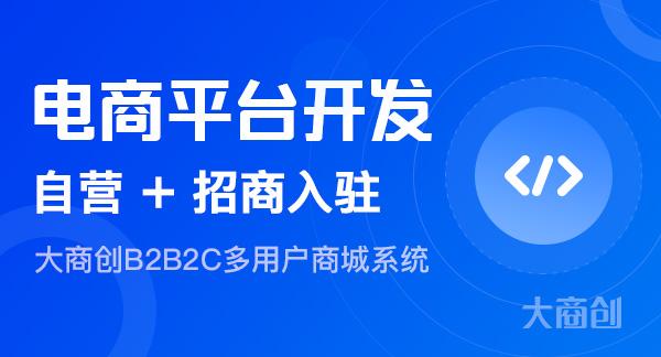 开发b2b2c商城选择哪家公司好